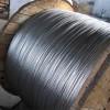 专业生产热镀锌钢绞线,1×7,1×19股高低锌层热镀锌绞线