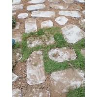 青石草坪石、青石草坪砖、青石汀步石