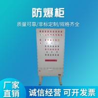 顺德供应防爆配电柜价格优惠物流块