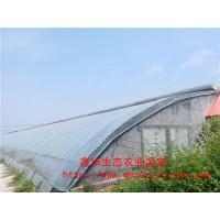 新型日光温室造价  日光温室效益  山东鑫华