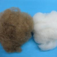 批发现货羊羔绒原料 超细度 免费拿样品